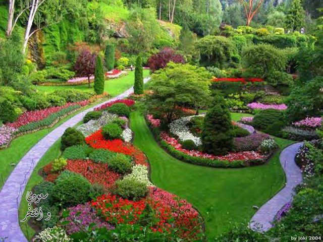 صورة صور حديقة روعه